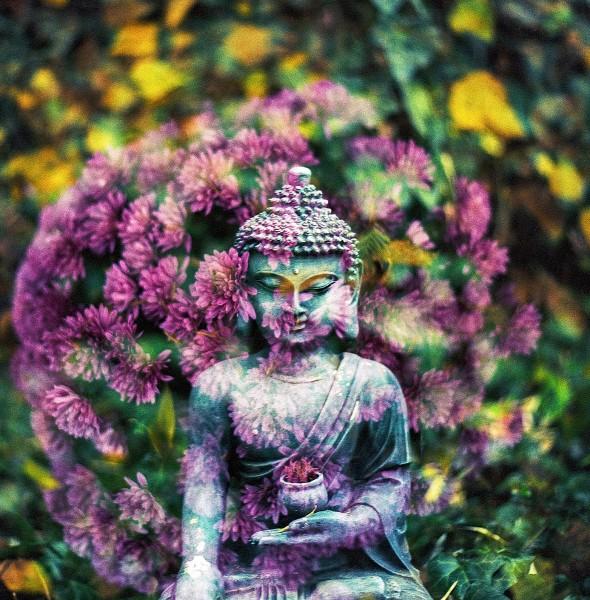 buddha-2081224_1920